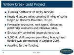 willow creek gold project18