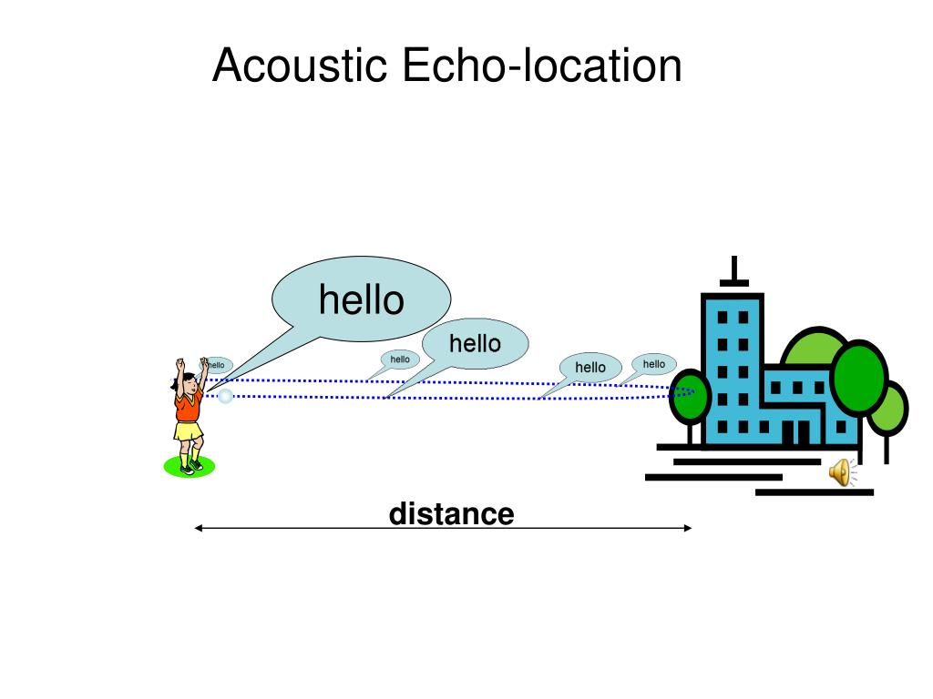 Acoustic Echo-location
