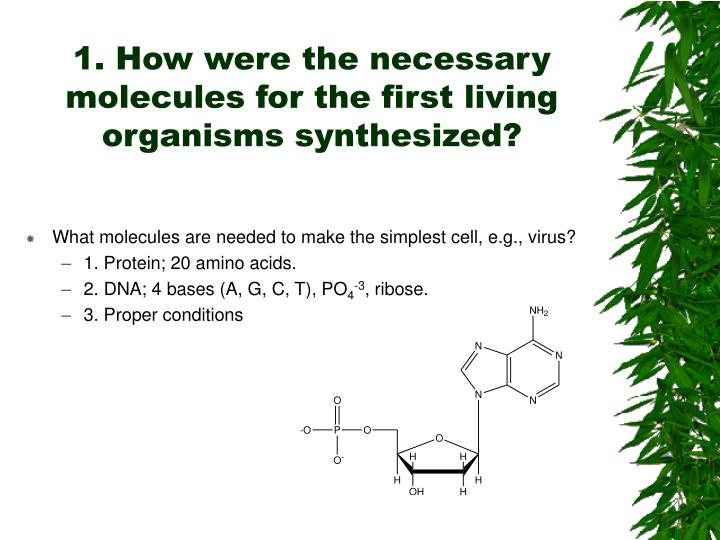 synthesised by living organisms Biomolecules are molecules that are synthesized by living organisms and contain _____ atoms.