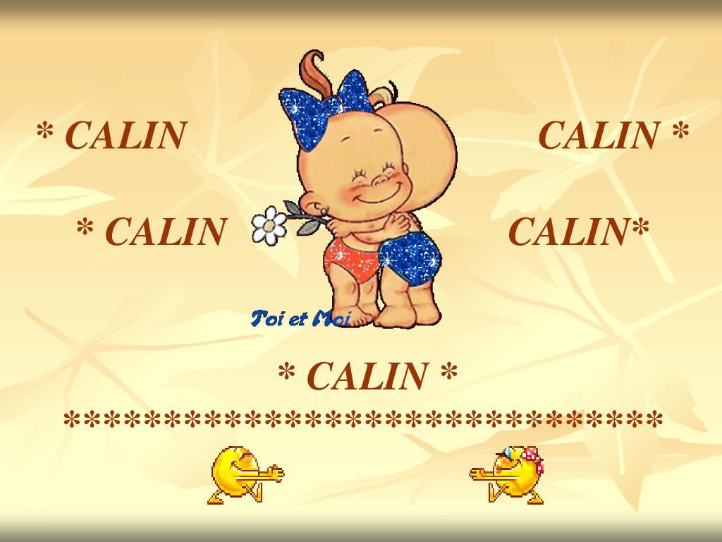 * CALIN                                   CALIN *