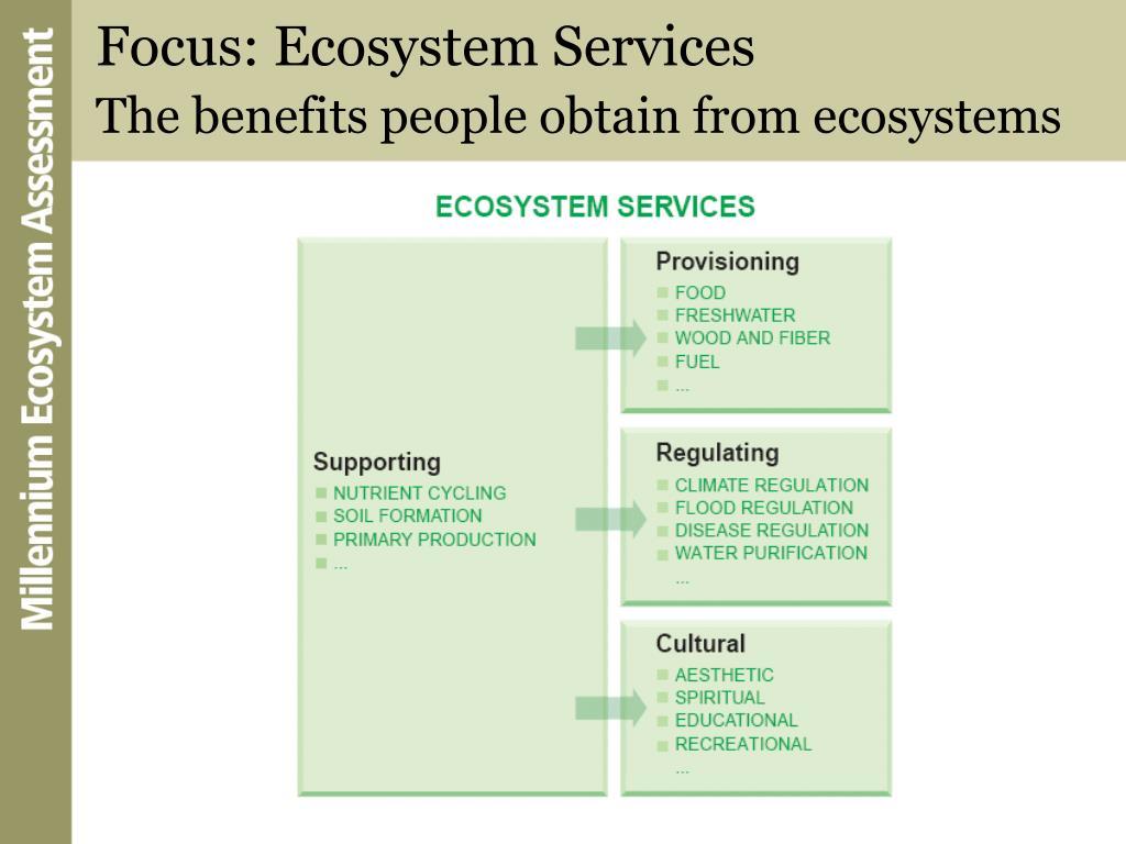 Focus: Ecosystem Services