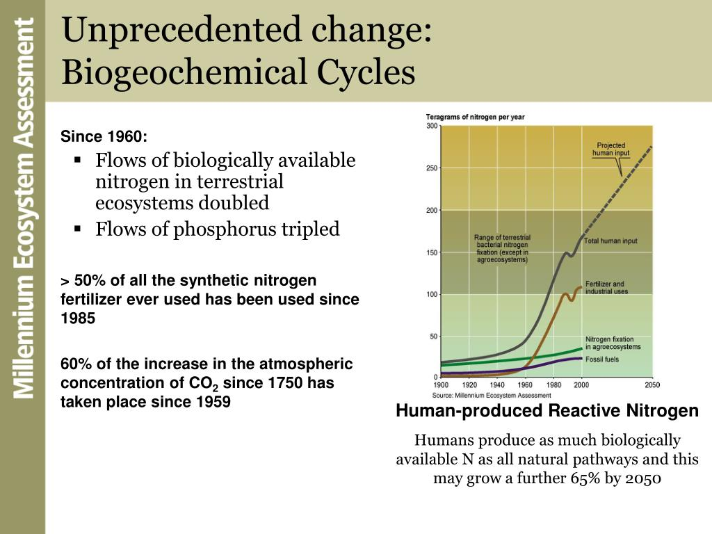 Unprecedented change: Biogeochemical Cycles