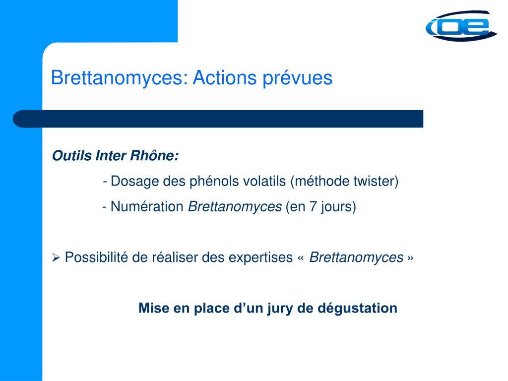 Brettanomyces: Actions prévues