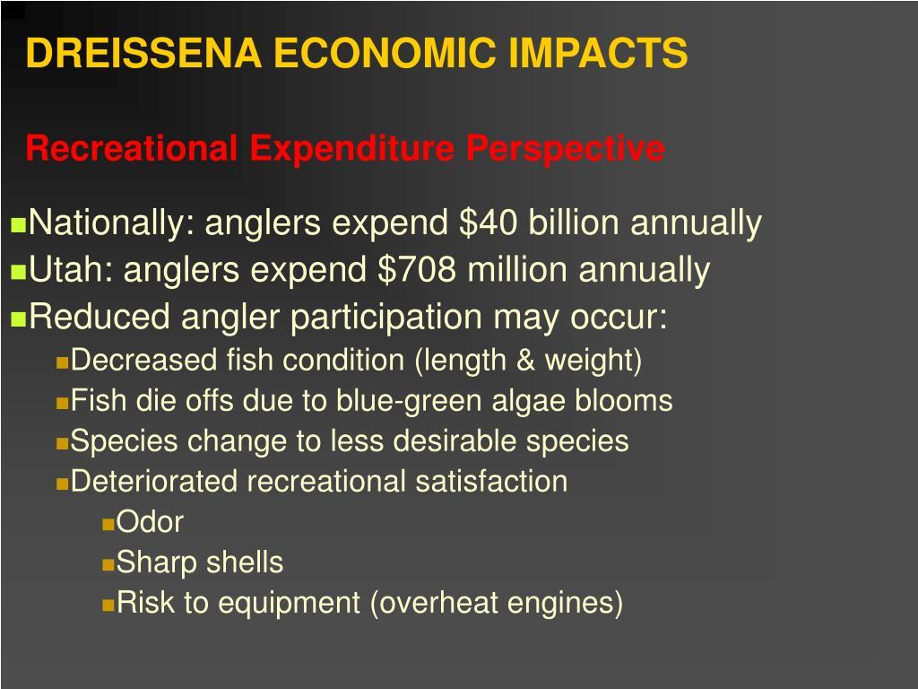 DREISSENA ECONOMIC IMPACTS