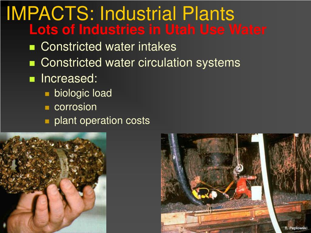 IMPACTS: Industrial Plants