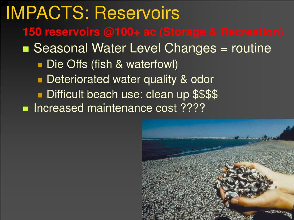 IMPACTS: Reservoirs