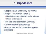 1 bipedalism