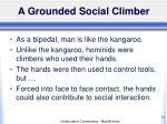 a grounded social climber