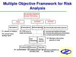 multiple objective framework for risk analysis37