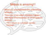 mitosis is amazing
