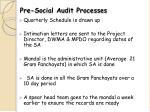 pre social audit processes