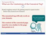 the canonical url tag what are the limitations of the canonical tag