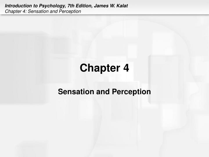 chapter 4 sensation and perception n.