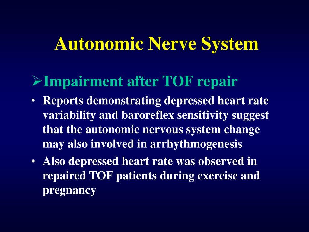 Autonomic Nerve System