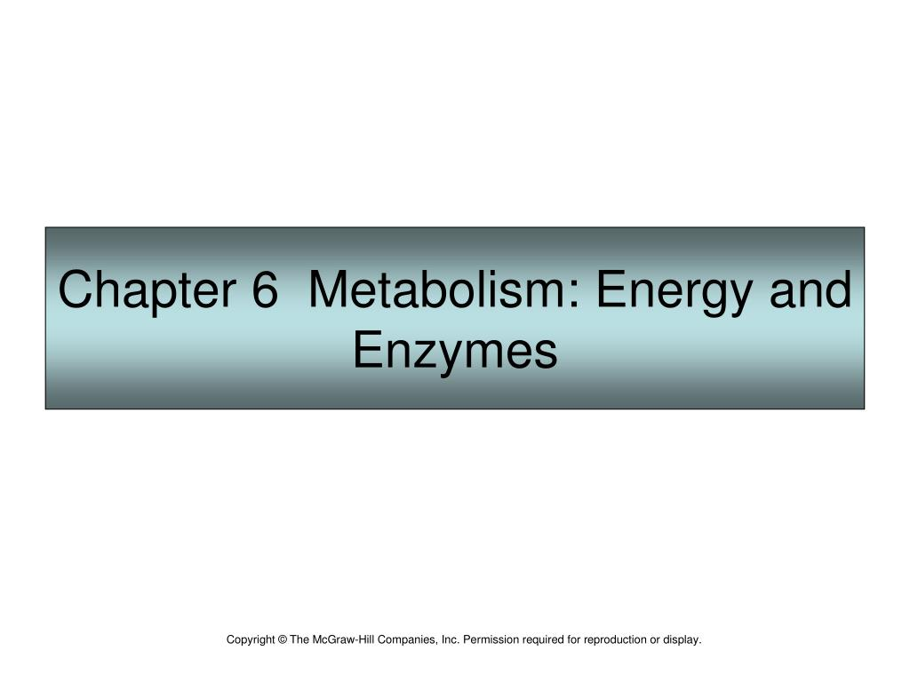 chapter 13 energy metabolism Chapter 13 carbohydrate metabolism chapter objectives: • this reaction does not produce as much energy as.