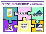 key vdh perinatal health data sources