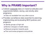 why is prams important