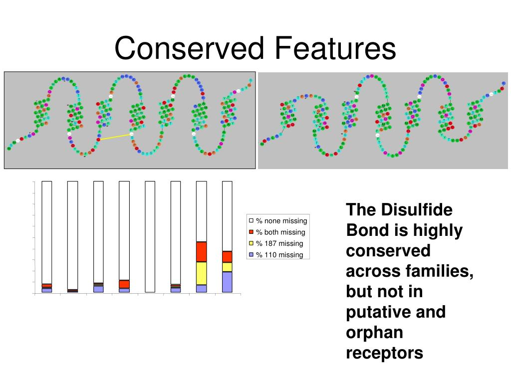 Conserved Features