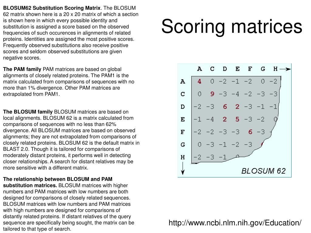 BLOSUM62 Substitution Scoring Matrix