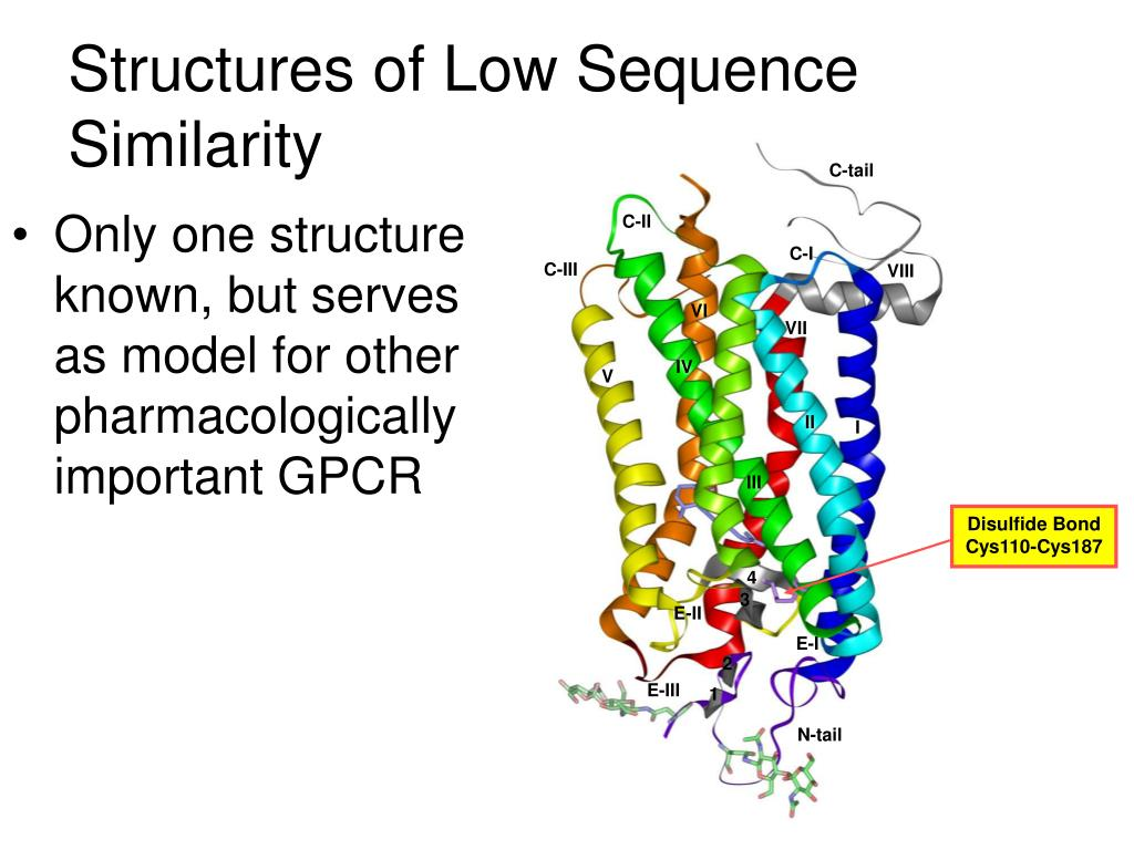 Structures of Low Sequence Similarity