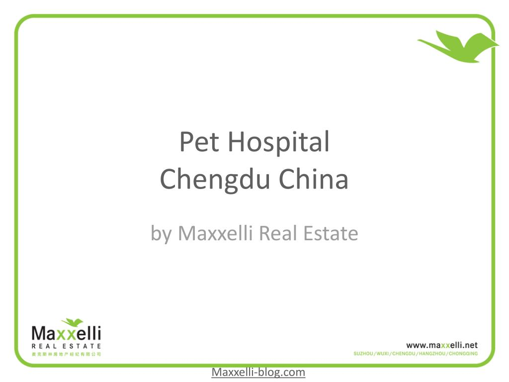 pet hospital chengdu china l.