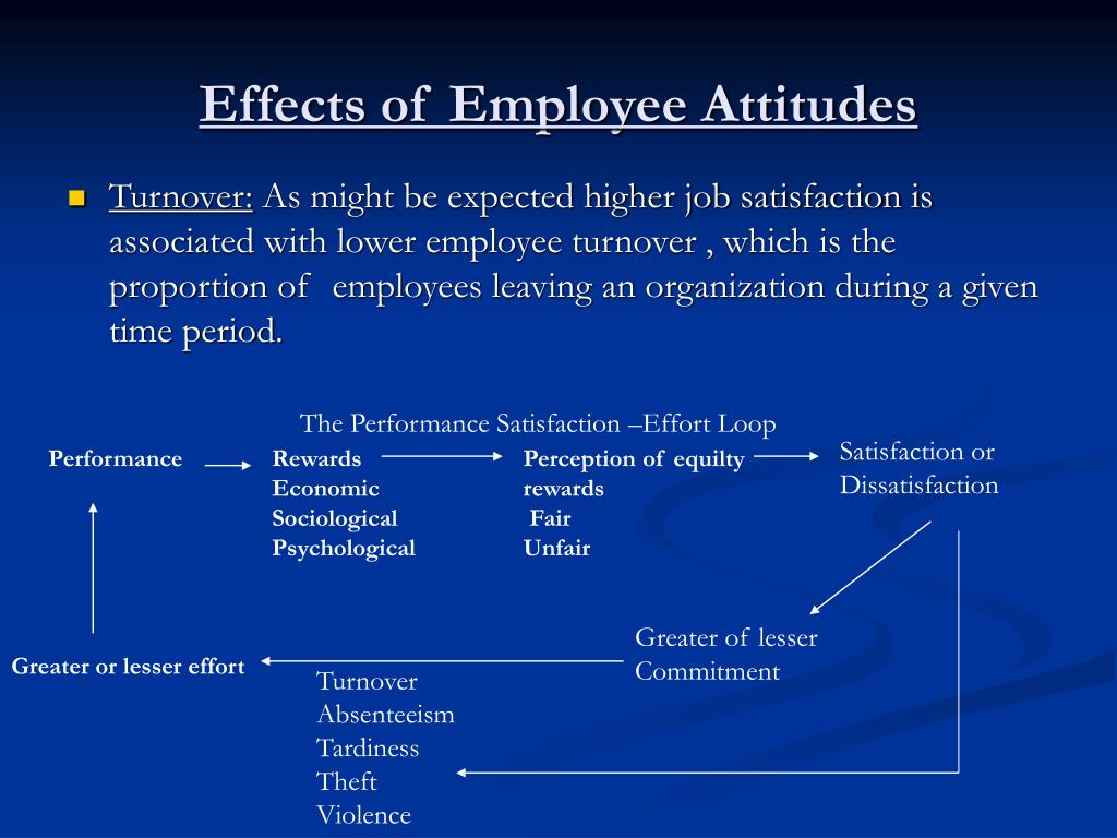 the causes and effects of employee turnover on economic performance Labour turnover and labour productivity in a retail organization w stanley siebert nikolay zubanov  we study the impact of labour turnover on labour productivity using a panel dataset of 347  performance-based rewards, employee participation, task diversity and job autonomy,.