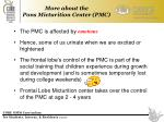 more about the pons micturition center pmc