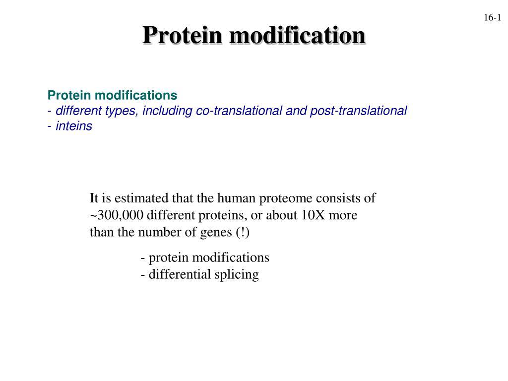 protein modification l.