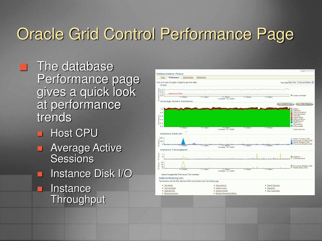 Oracle Grid Control Performance Page