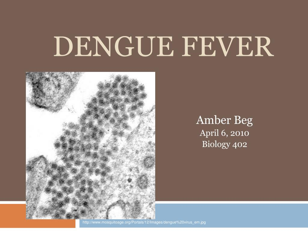the history of dengue fever biology essay History of present illness should cover magnitude and duration of fever and method used to take the temperature true rigors (severe, shaking, teeth-chattering chills—not simply feeling cold) suggest fever due to infection but are not otherwise specific.