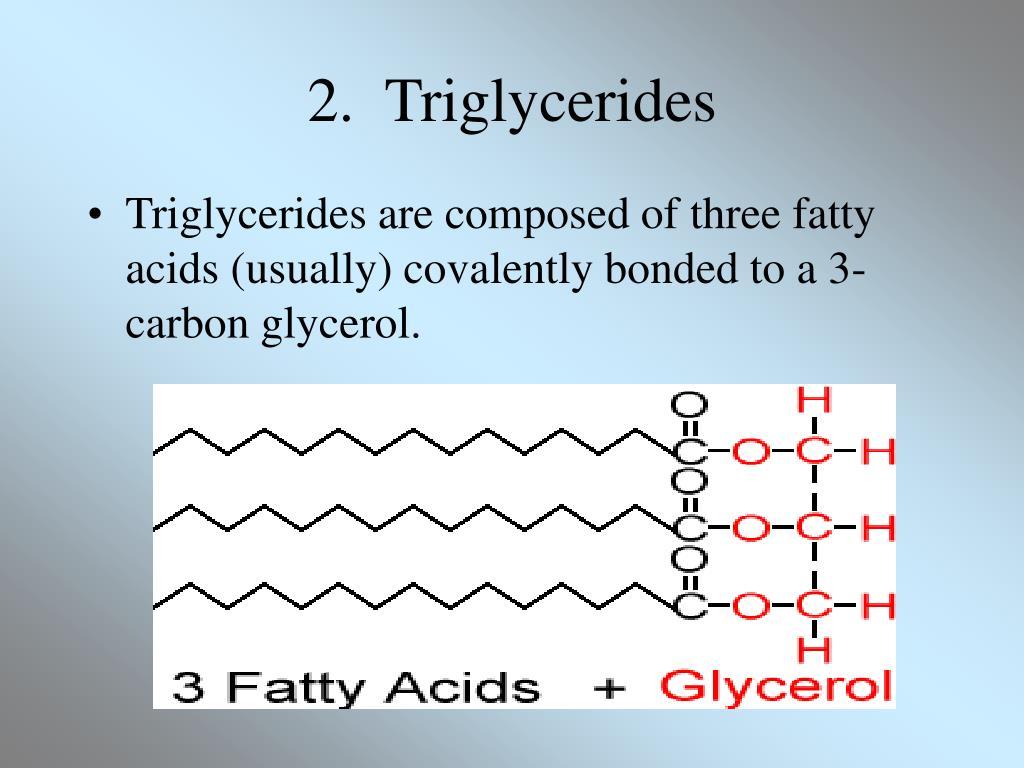 2.  Triglycerides