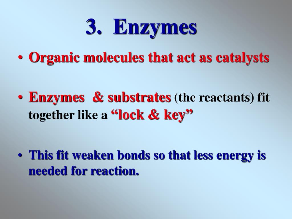3.  Enzymes