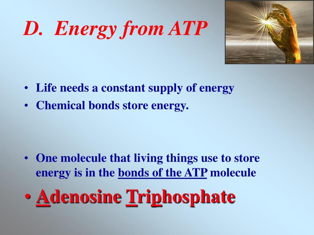 D.  Energy from ATP