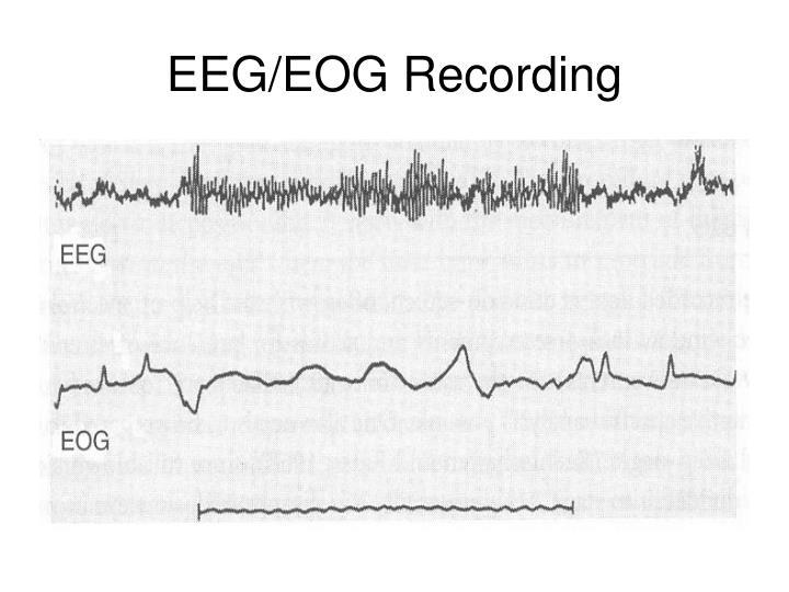 EEG/EOG Recording