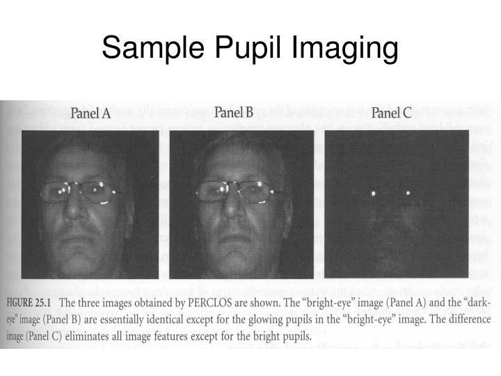 Sample Pupil Imaging