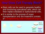 how does cell therapy work2
