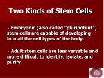 two kinds of stem cells