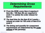 determining gross requirements32