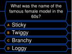 what was the name of the famous female model in the 60s