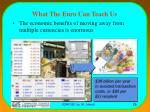 what the euro can teach us