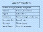 adaptive features54