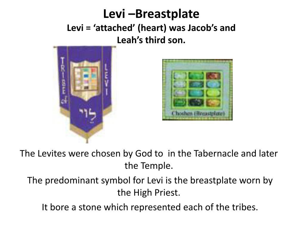 Levi –Breastplate