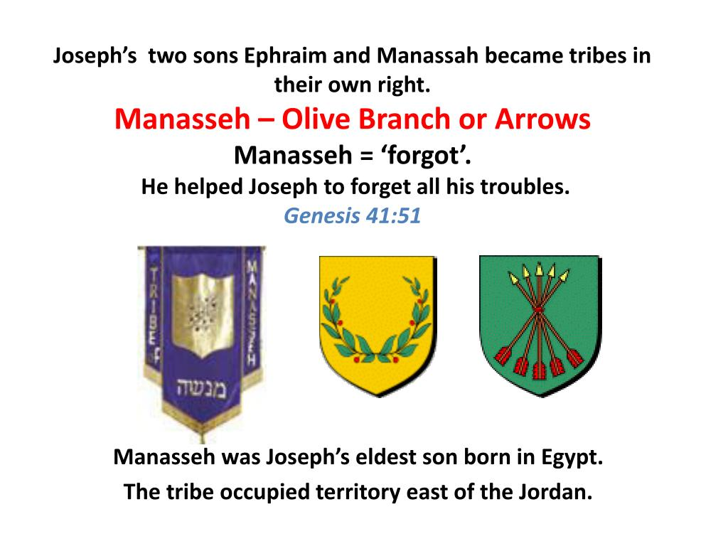 Joseph's  two sons Ephraim and Manassah became tribes in their own right.