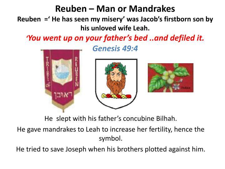 Reuben – Man or Mandrakes