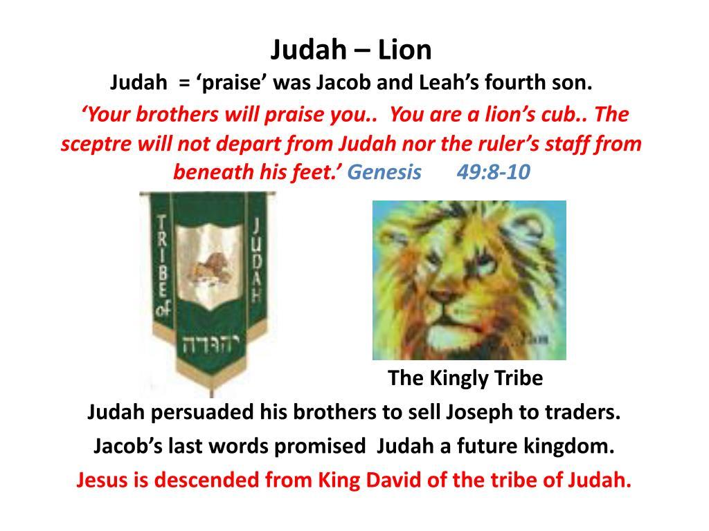 Judah – Lion
