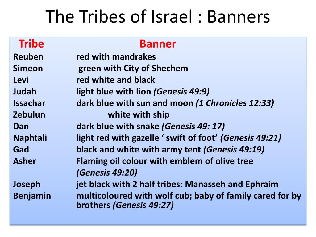 The Tribes of Israel : Banners