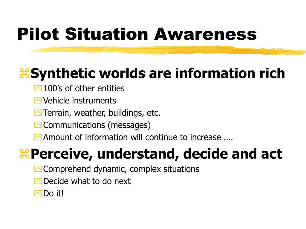 Pilot Situation Awareness