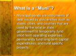 what is a muni