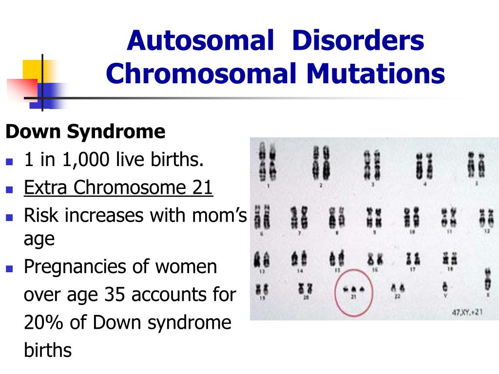 Ppt - Genetic Disorders Powerpoint Presentation - Id444219-8431