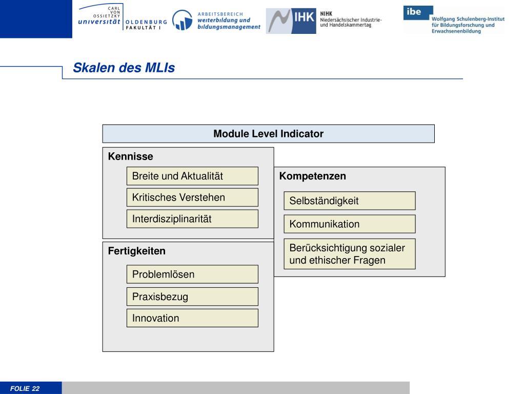 Skalen des MLIs